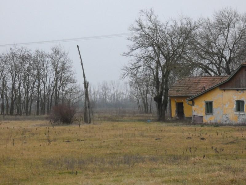 Ruzsa Eladó Mezőgazdasági tanya